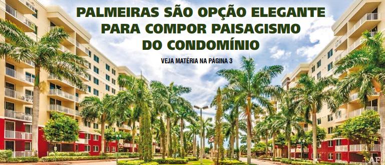 Palmeiras são opção elegante para compor paisagismo do condomínio
